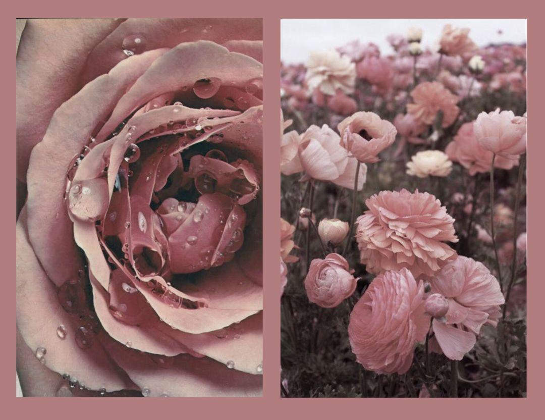 我色我爱色成人迷奸_时尚 正文  在我心中,永远不会出错的颜色还是 dusty rose 干枯玫瑰