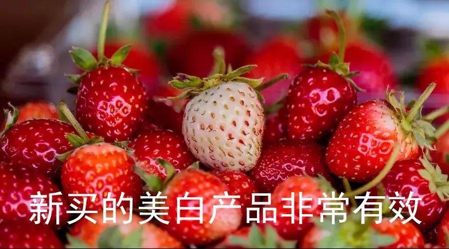 草莓能减肥图片