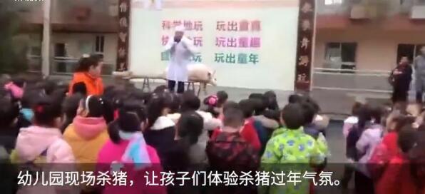 从娃娃抓起?幼儿园组织孩子看杀猪_老师拿内脏讲解