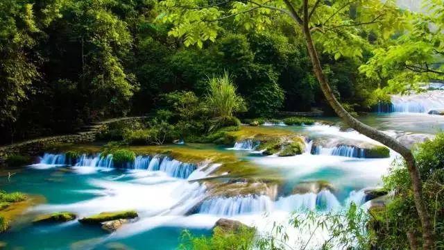 走过68级瀑布,登上电瓶车去往下一个景点——水上森林,这是小七孔景区图片