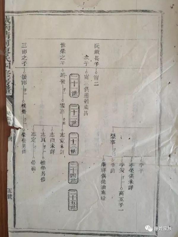 廖爽公世系人口_人口普查