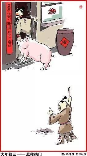 梦到白猪拱门