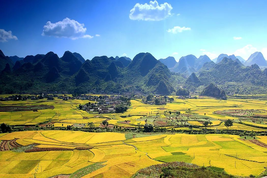 中国最早的春天,即将花开成海,美若仙境