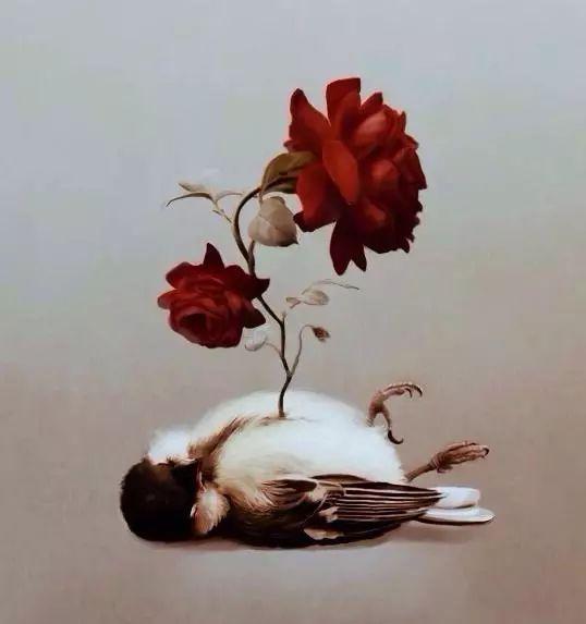 荐阅 林徽因译王尔德《花草与玫瑰》秋天的大雁先写景色树夜莺图片