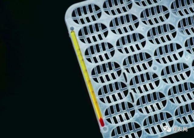孵化箱的原理_自动恒温孵化箱原理图