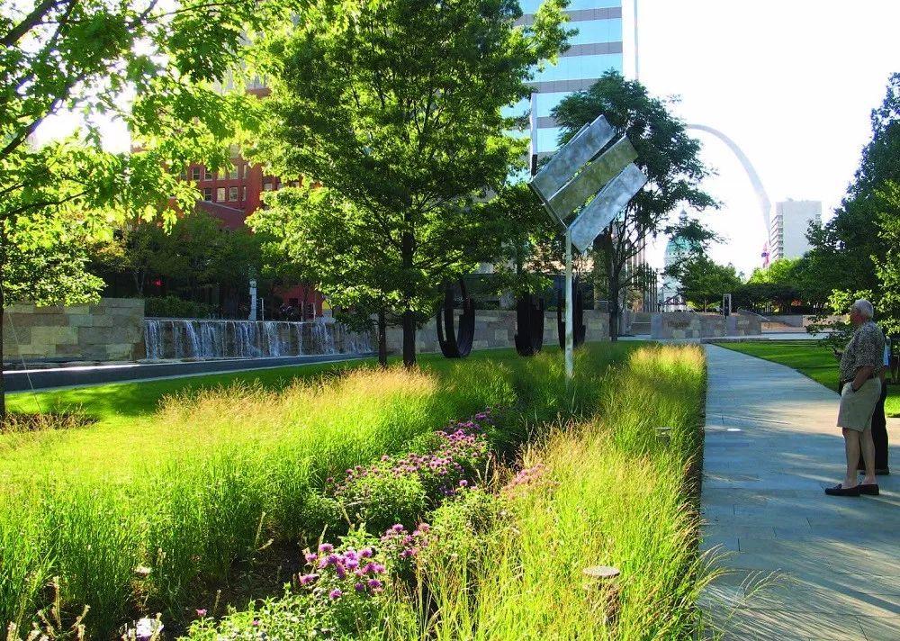 海绵城市建设中的被子设计与选择手缝手把植物图片
