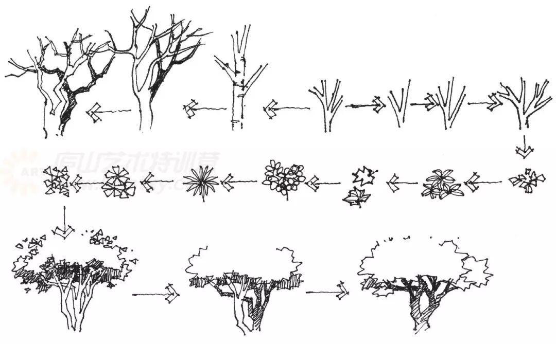 作为景观设计师必须掌握的景观线稿表现
