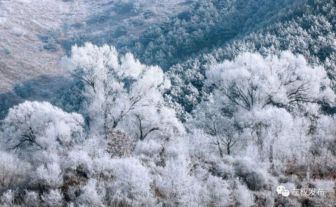 这是1月23日在山西左权县紫金山风景区拍摄的雾凇景观.