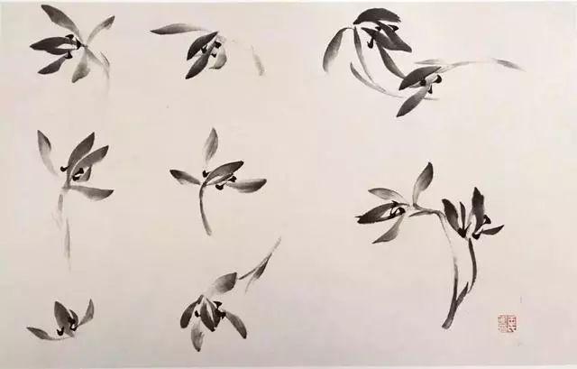 国画兰花_国画兰花绘画技法,太棒了