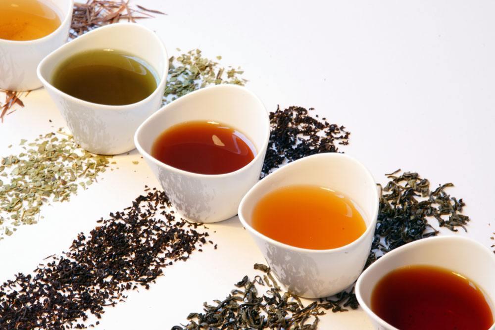 为什么喝减肥茶拉肚子?减肥茶到底能不能减肥