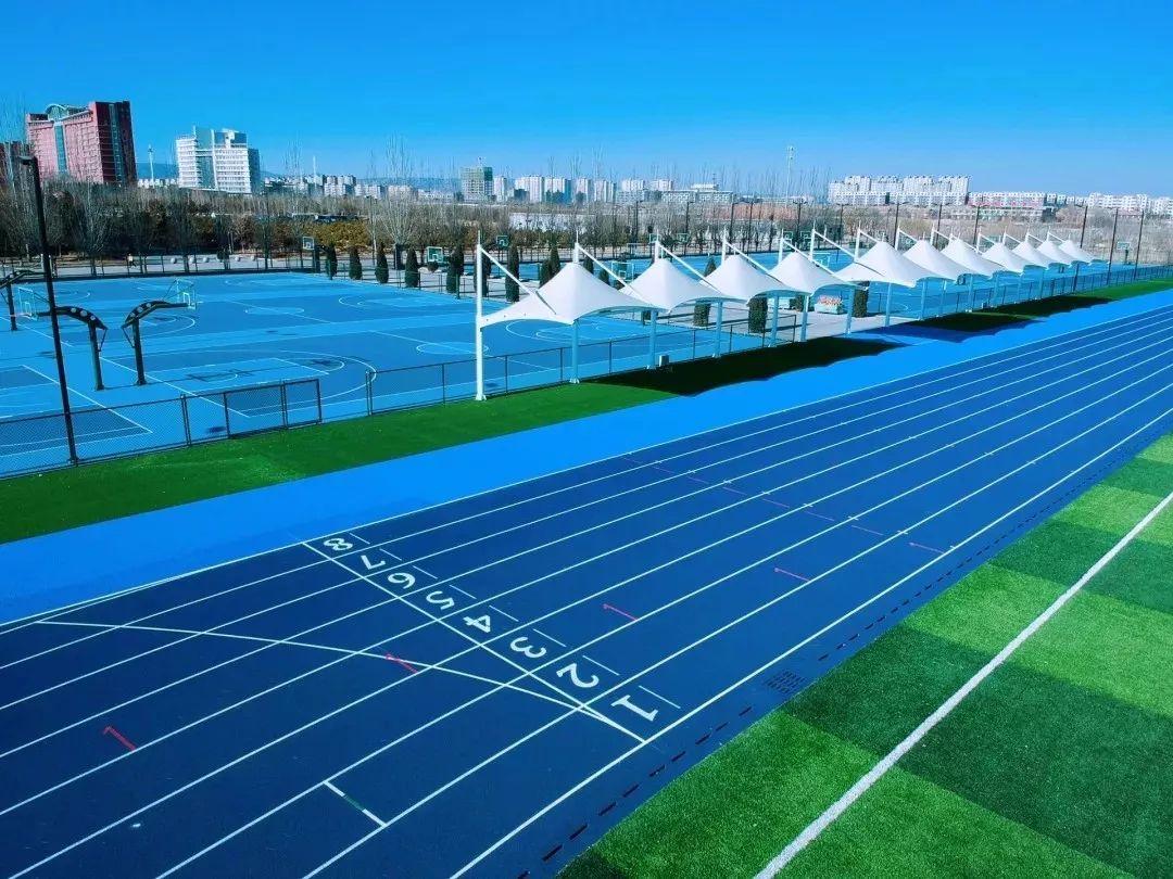 日本人造人体艺术图片_此外还有人造草坪橡胶标准田径场,足球场3座;1200平方米的多媒体教室