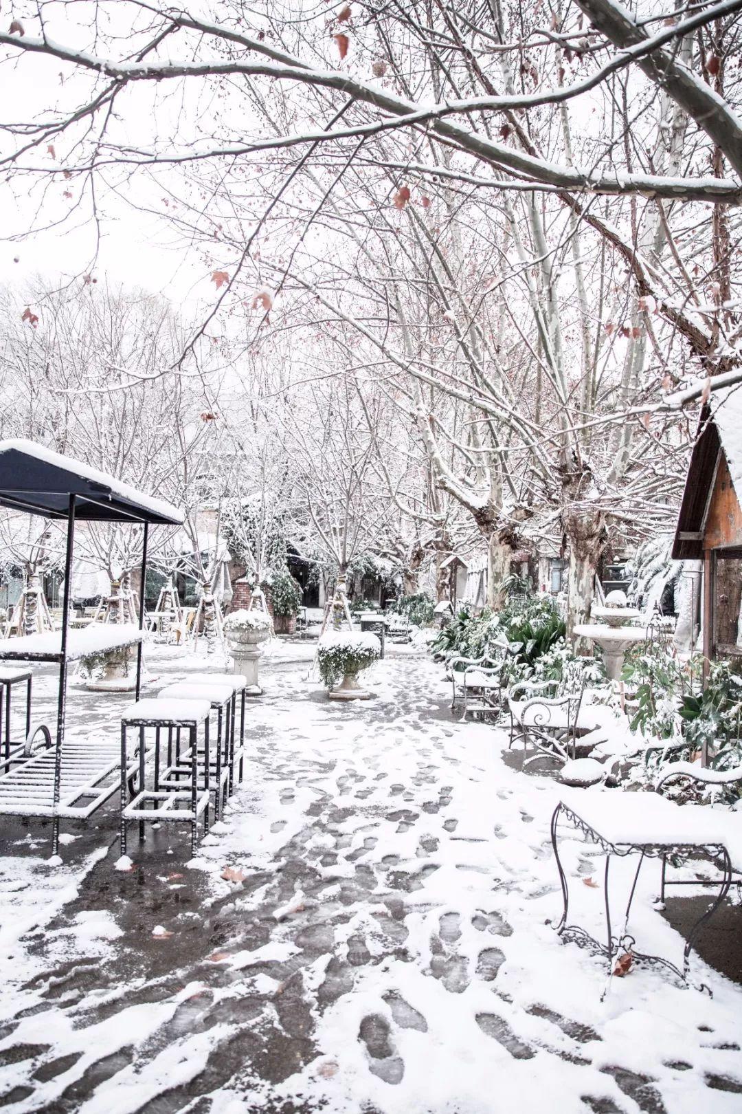 刘力畅&葛秋成 一起欣赏下今天的雪中校园吧~ (图为王森学院苏州石湖图片