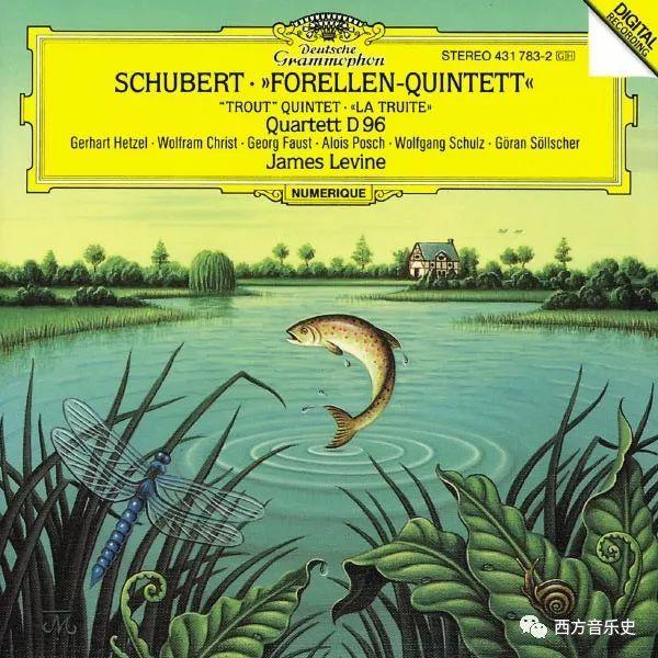金鳟鱼可以生吃吗以舒伯特《鳟鱼》为例看西方音乐的魅力
