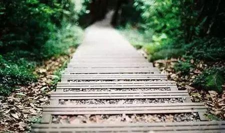 【人生感悟】不必仰望别人,自己亦是风景!
