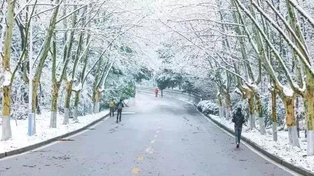 美爆朋友圈 | 南方地区求雪成功!仙境view已上线~