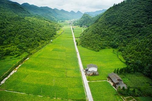 图片欣赏:绿色石柱,人文天地