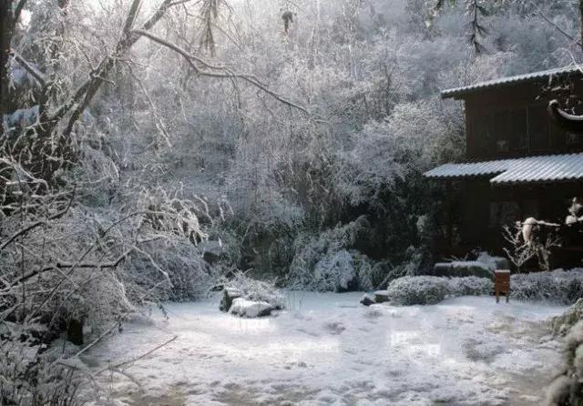 美到穿越!同样都是下雪,为何济南的雪是这样的美!