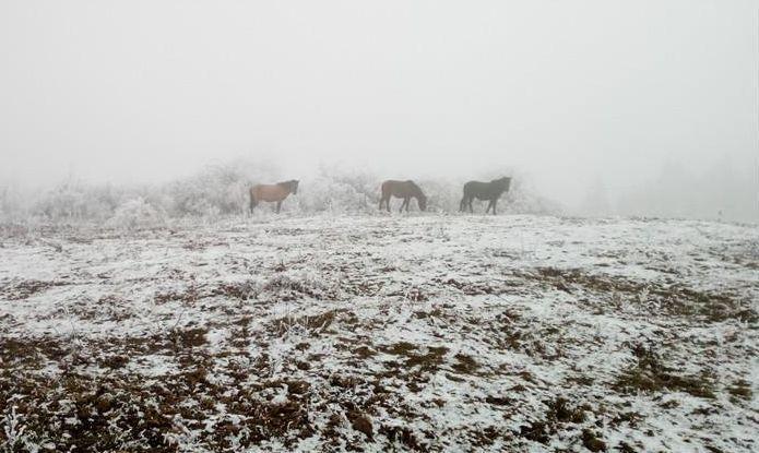 最新发现!川西又多了一个林海雪原徒步圣地,仅92%的驴友知道!