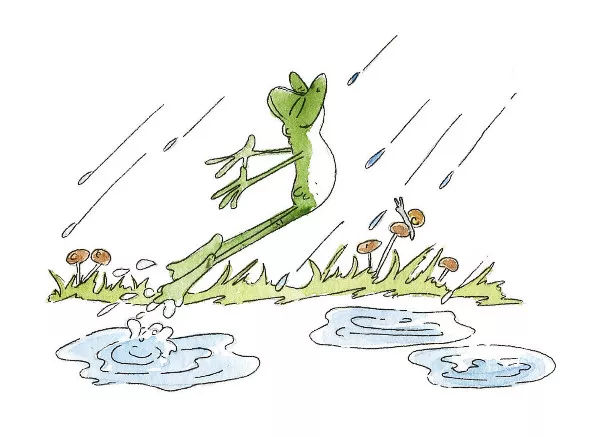 蝌蚪进化青蛙简笔画