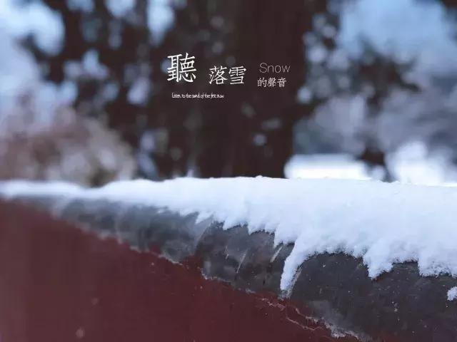 济南灵岩飞雪,一派琉璃世界