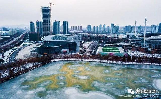 航拍雪后洛阳凌波湖,凝红快绿色彩艳丽,高楼大湖气势磅礴