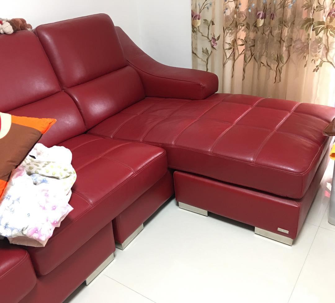 沙发清洁别发愁,看合肥家政女王5大妙招,让你轻松过好年