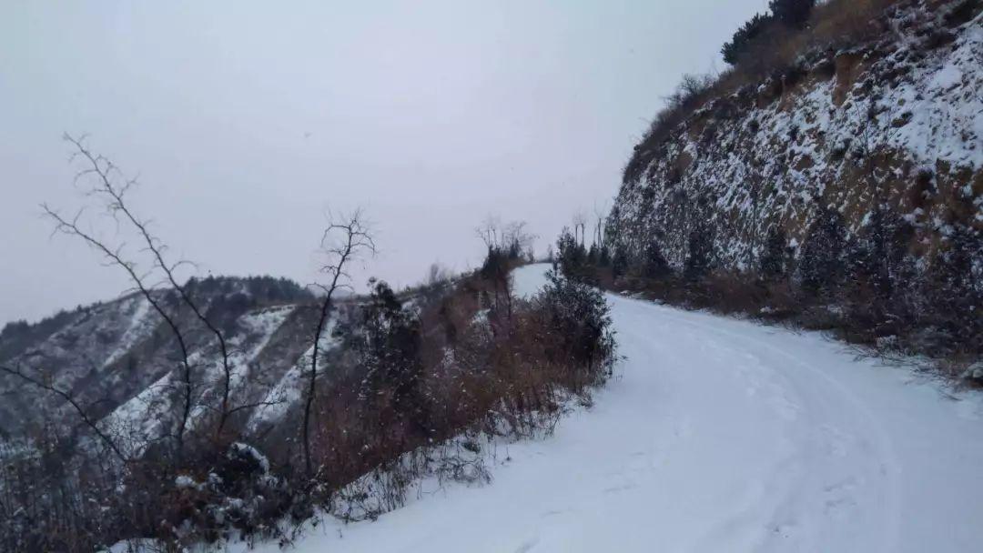 一场雪后,才知道素颜的蓝关古道有多美!