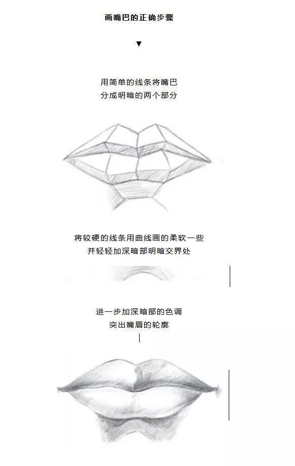 不同嘴型的画法