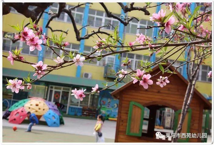 温馨提示丨莱阳市西苑幼儿园秋季招生简章