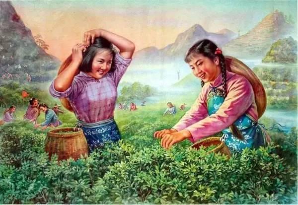 56个民族,56枝花,太好看了-送大家一组你从没见过的中国年画欣