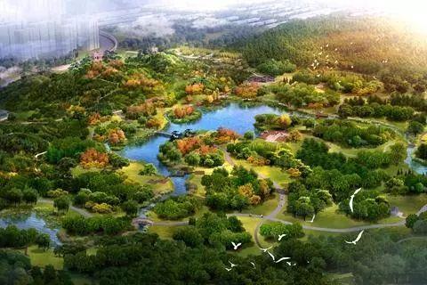 白河城市森林公园开建图片