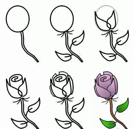 玫瑰花的画法 玫瑰花简笔画大集合