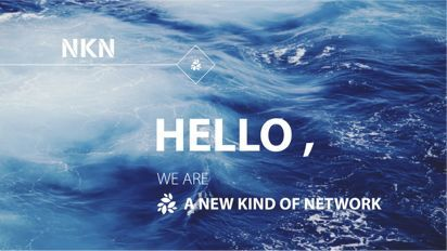 New kind of Network (NKN)