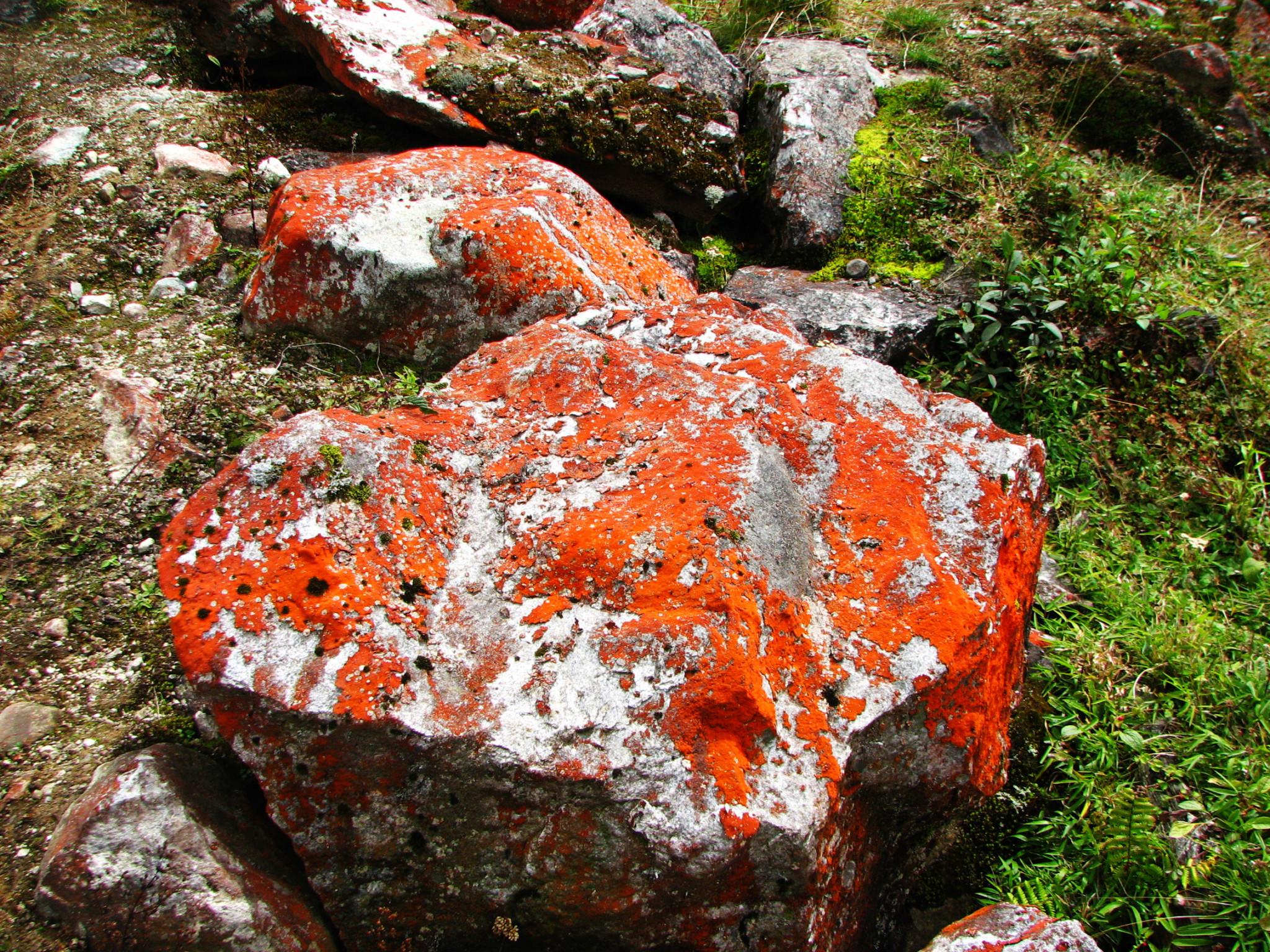 竹泉村红石寨图片