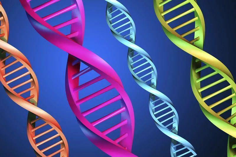 """父母的基因有多""""牛""""?不遗传都会影响孩子!"""