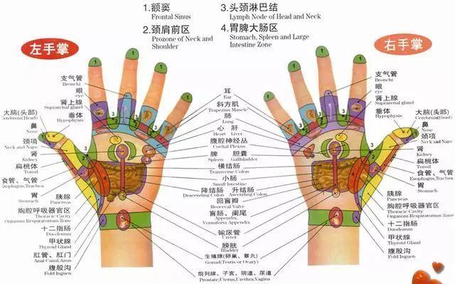 安徽中医药大学针灸推拿学院于庐江县县医院开