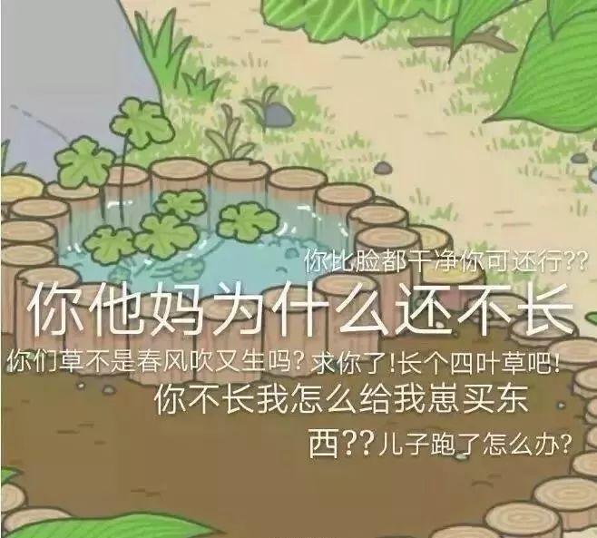 """【高中生】若是""""参观青蛙""""是个高中生…"""