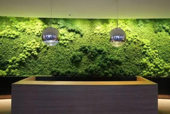 花墙 景观 墙 植物 564_378