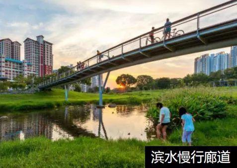 丰李镇最新规划图