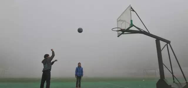 和篮球狗交朋友,请慎重!
