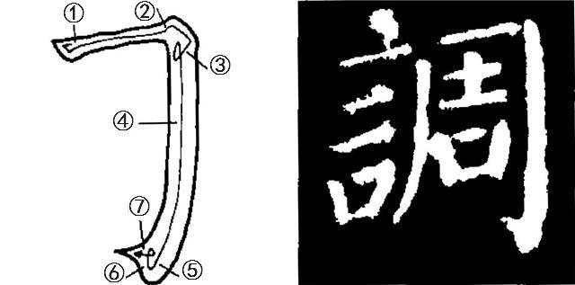 ⑤且行且弯,曲度比竖弯钩大,极富弹性.