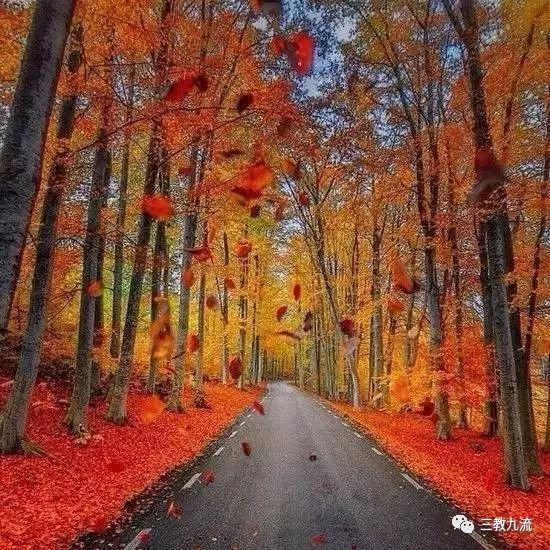 【这么美的路】这条路上我们一起走吧!