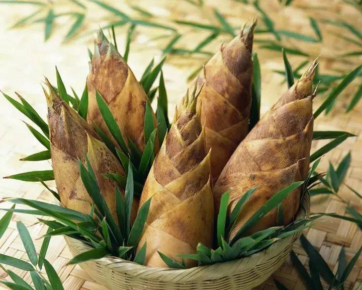 生活|此时最适合吃冬笋,美味又降脂!