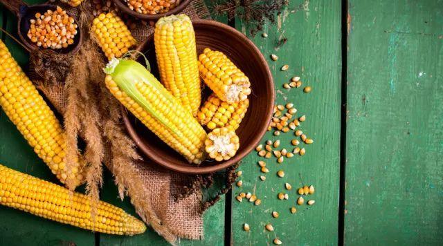 甜玉米是不是转基因_煮玉米时加一物,味道更甜营养全,还能控血糖
