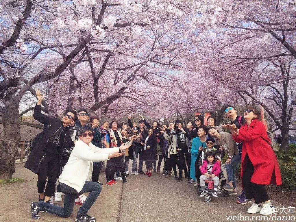 全日本的赏樱圣地都在这里!