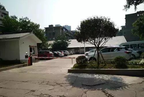 乐山中心城区有多少人口_四川乐山大佛高多少米
