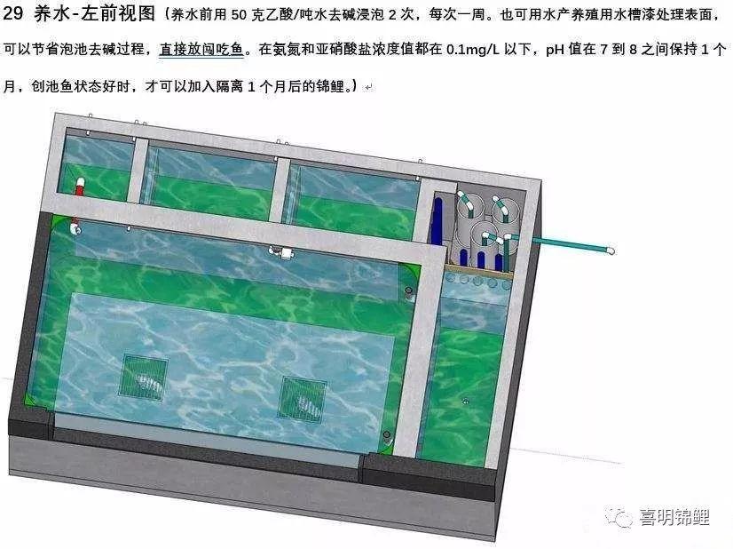 使用鱼池后的体会是,纯溢流过滤鱼池,3:1池滤比的过滤比率偏小.图片