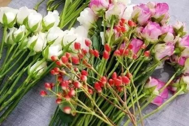哪些花材适合进行插花