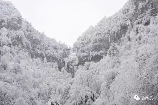 小草坝雾凇冰挂,真的美极了!