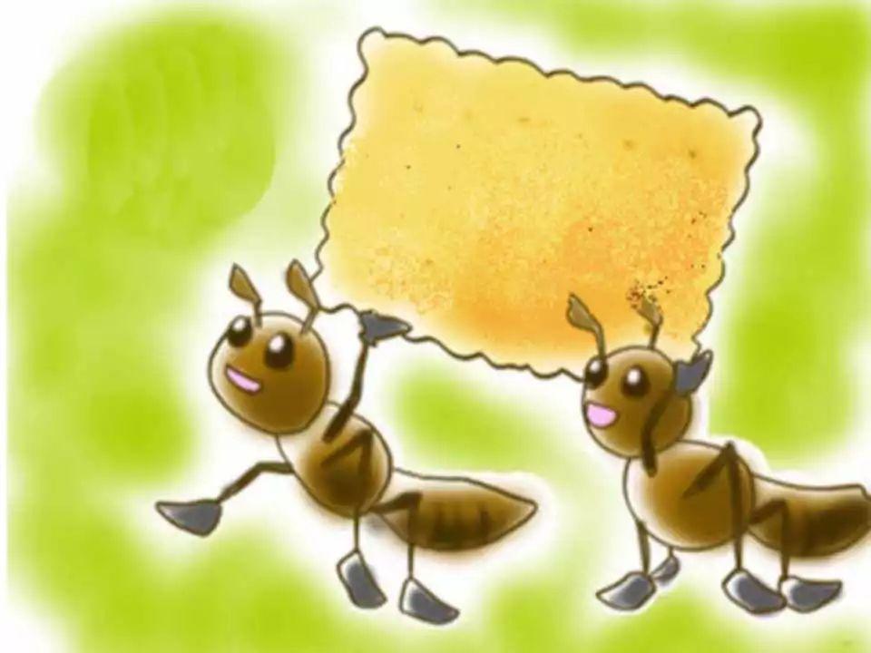 小学美术课件蚂蚁搬家ppt